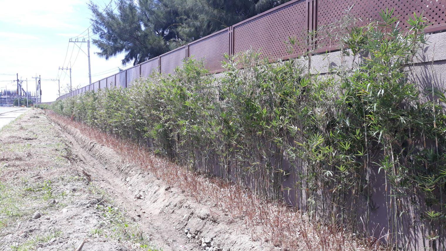 Phase 2 Perimeter Wall